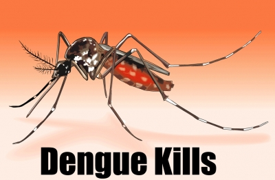 Over 8,500 dengue cases reported in Jan. and Feb.
