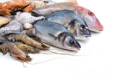 Sri Lanka earns a profit of Rs 1200 million by fish exports last year