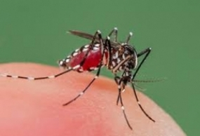 Troops engage in Dengue prevention