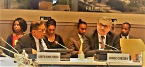 Ambassador Rohan Perera represents panel discussion on 'Pathways to Sustainability'