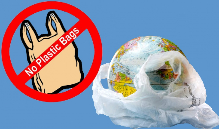 essay on say no to polythene bags