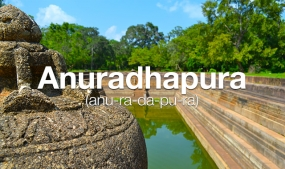 UDA regulates Anuradhapura Town Center Redevelopment Project