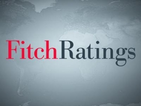 Sri Lanka consumer durables demand to remain healthy in 2016 - Fitch
