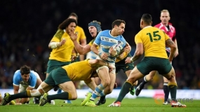 Rugby World Cup: Australia beat Argentina to reach final