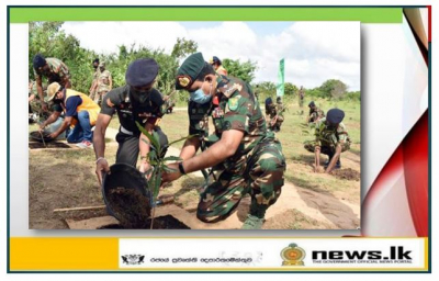 Army's drive to re-plant Wilpattu Forest Reserve