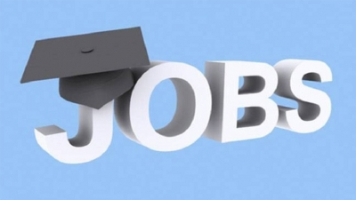 Jobs for 54,000 unemployed graduates by January