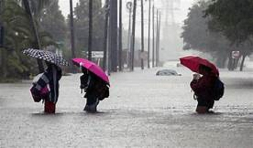 Showery condition to enhance in next few days