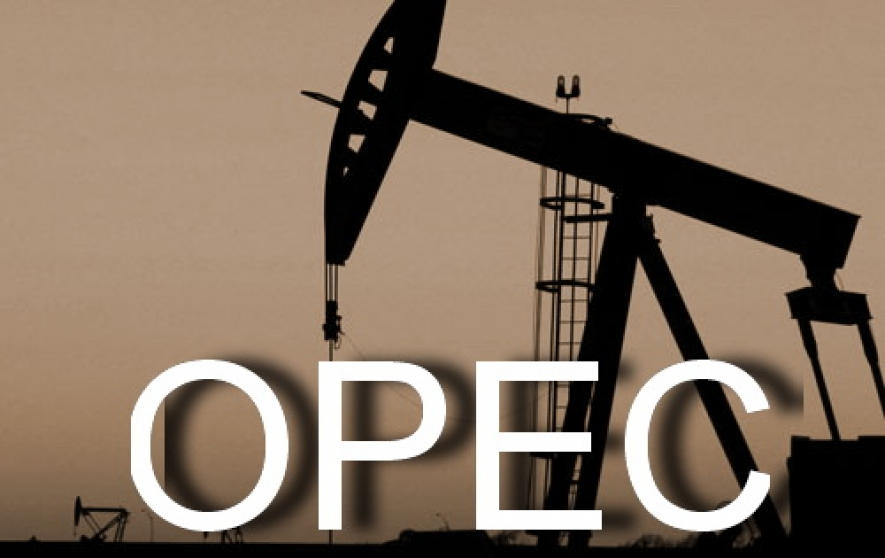 Oil price plunges, dividing Opec members at meeting
