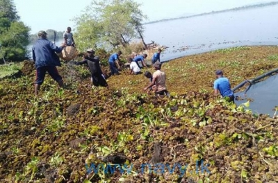 Navy initiates cleaning of Parakrama Samudraya