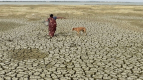 Govt to write-off loans given to women in drought-affected districts