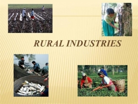 Rural Industries in the Kurunegala District to be developed