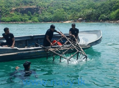 Navy assists to Coral replanting  at Southern coastal line