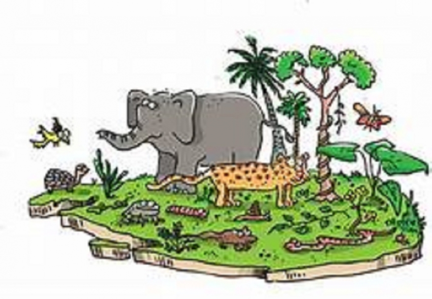 SL needs  Rs. 30 bn to achieve biodiversity targets