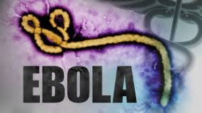 Cuba: International Meeting Against Ebola Begins