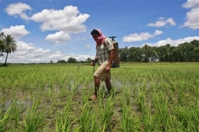 Sri Lanka bans use and sale of  five active pesticide ingredients