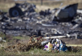 More human remains found in MH17 crash site