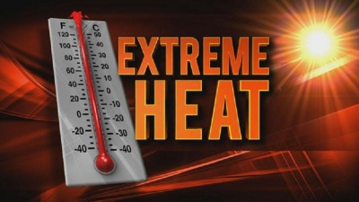 Extreme heat to continue; horses in Delft at risk