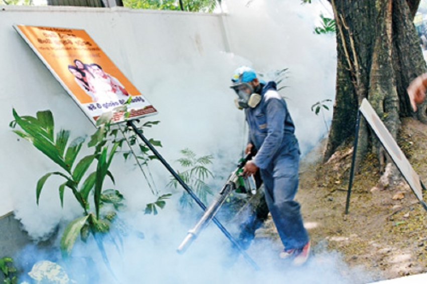 South-west monsoon main reason behind rise in dengue cases
