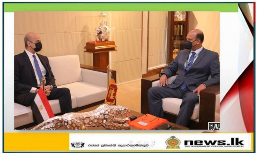 Egyptian Ambassador meets Defence Secretary
