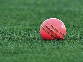 Australia v New Zealand: At first blush, pink ball passes Test