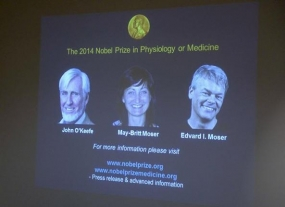 Three share Nobel for medicine