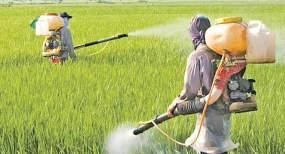 CABINET COMMITTEE OF EXPERTS TO STUDY GLYPHOSATE ISSUE