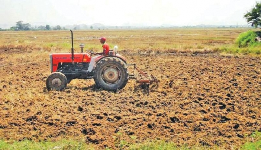 Water for Ampara paddy cultivation from April 1