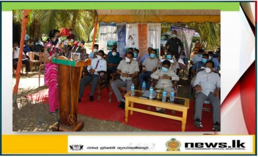 Celebrating the International Day for the Conservation of the Mangrove Ecosystem