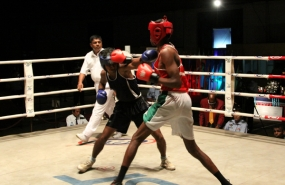 Lion's Cup 2014-  Sri Lanka's World Class Boxing Meet