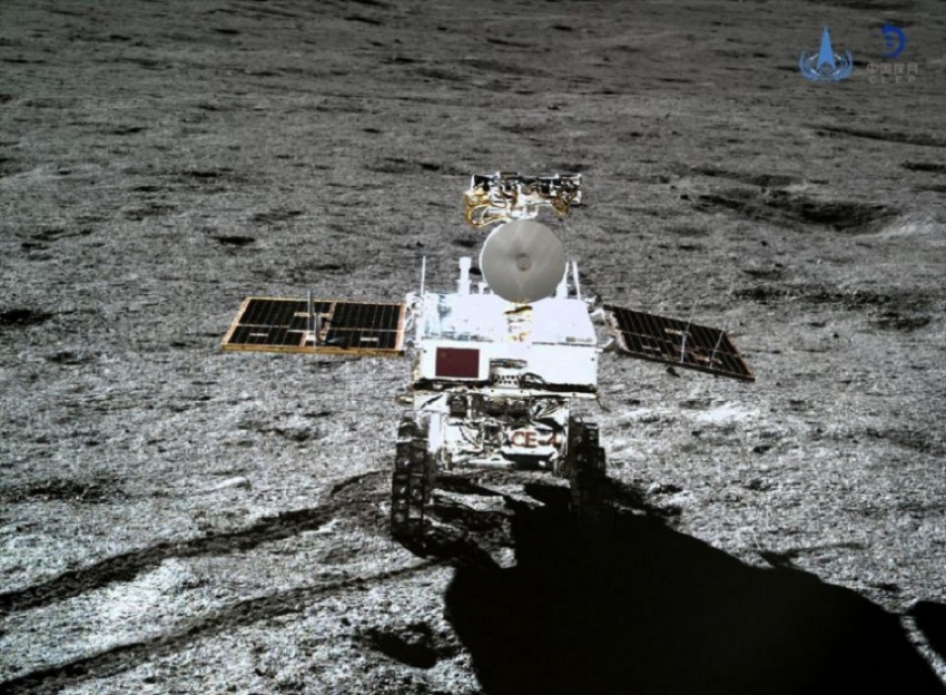 Cottoning on: Chinese seed sprouts on moon