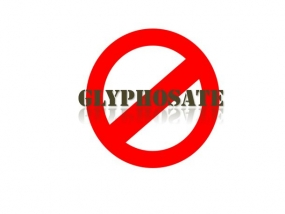 Govt. issues gazette notification banning Glyphosate