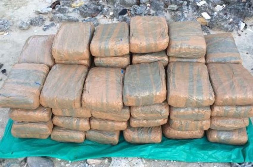 Navy recovers 122.5kg of Kerala cannabis