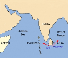 Sri Lanka, Maldives discuss deriving maximum benefits from marine resources