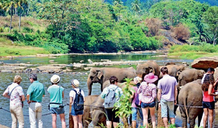 Govt  and PCs must cooperate to boost tourism