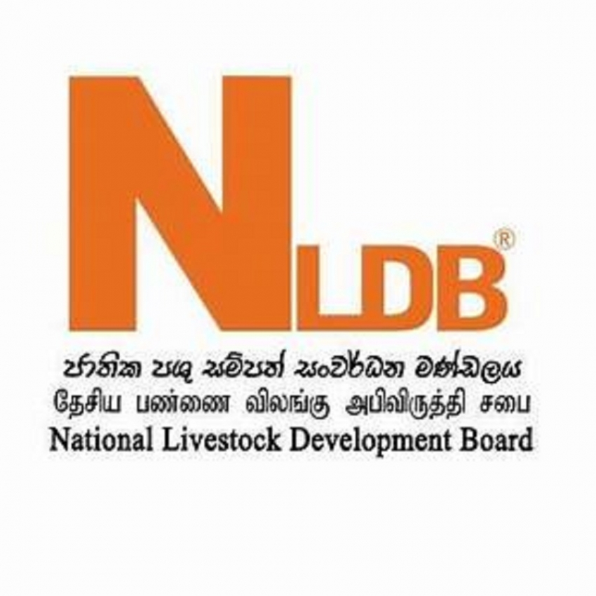 NLDB to invest $ 10 million in value-added products