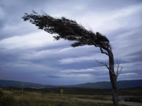 possibility for increasing of South-west monsoonal wind speed