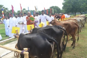 Bodhiraja Foundation Donates Cattle to 100 Low Income Families of Jaffna