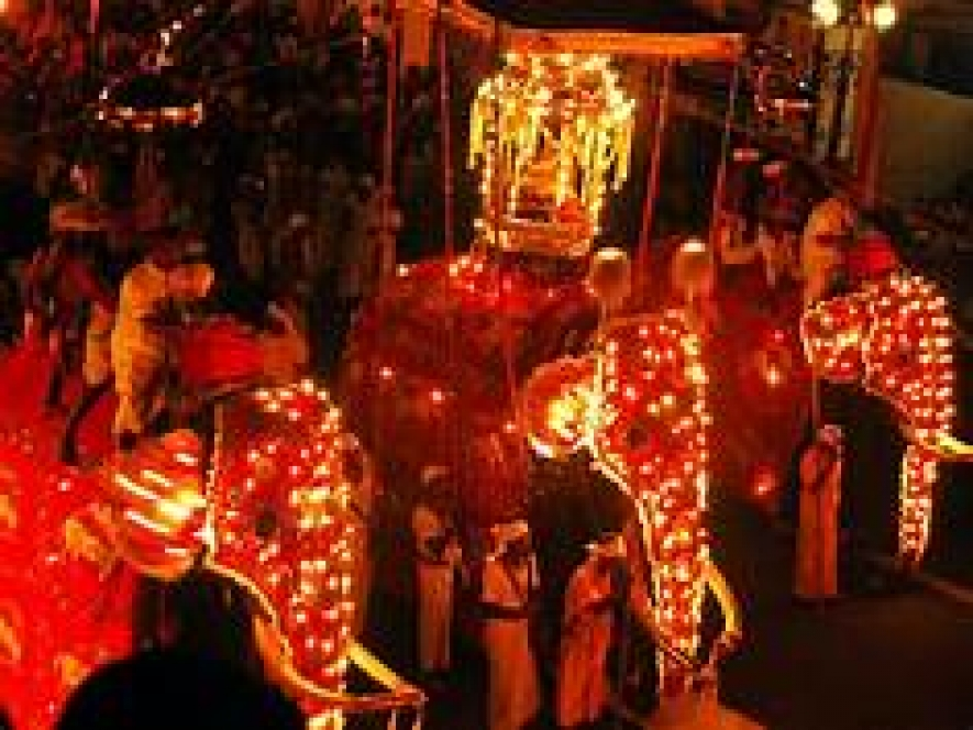 "Historic Kandy Esala Perahera festival begins with ""Kap"" ceremony"