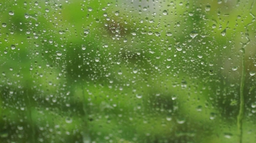 Prevailing showery condition continue next few days
