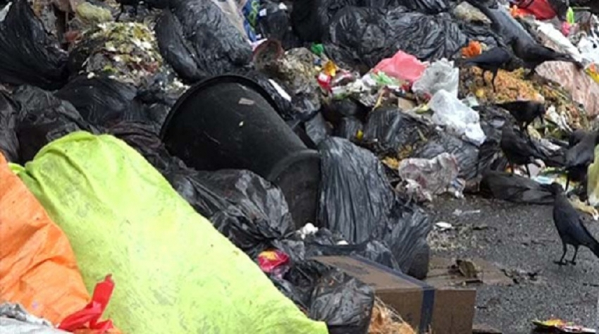 Moving garbage piled up in Colombo to Aruwakkalu commences   -