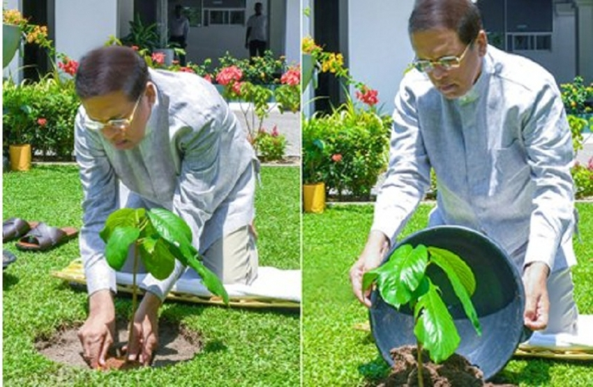 President performs New Year rituals