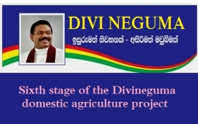 Kurunegala ready for 6th Stage of Divineguma domestic agriculture projects