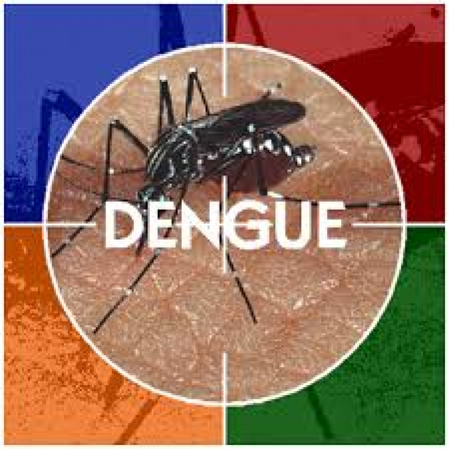 16,236 suspected dengue cases