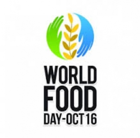 World Food Day which falls today  focuses on  family farming