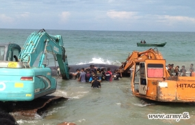 SL Army soldiers free beached whale in eight-hour operation