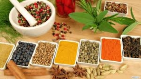 10 Ayurvedic drug centres for Wayambe