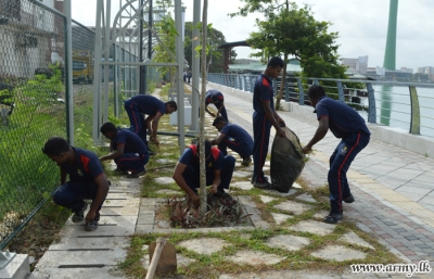 Navy celebrates the International Day for the Conservation of the Mangrove Ecosystem
