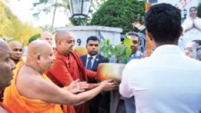 Germany receives a sapling of sacred Sri Maha Bodhi