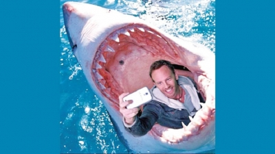 SELFIES: Five times more deadly than SHARK ATTACKS