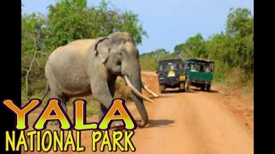 National Geographic ranks Yala sixth in world